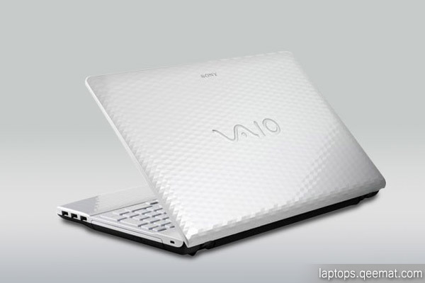 Sony Vaio EH15FX Picture